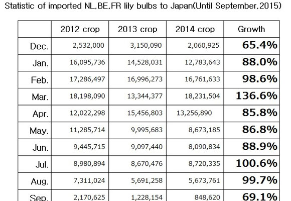 Statistic of imported NL,BE,FR lily bulbs to Japan(Until November, 2015) (Dec 15, 2015)