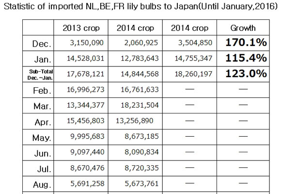 Statistic of imported NL,BE,FR lily bulbs to Japan(Until Jan, 2016) (Feb 19, 2016)