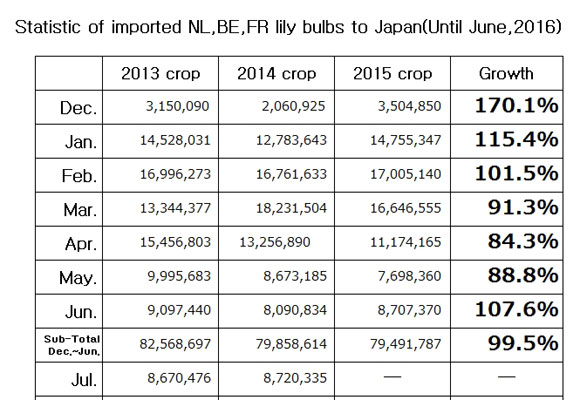 Statistic of imported NL,BE,FR lily bulbs to Japan(Until Jun, 2016) (Jul 12, 2016)