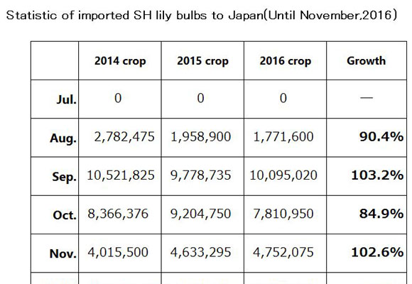 Statistic of imported SH lily bulbs to Japan(Until Nov,2016) (Dec 12, 2016)