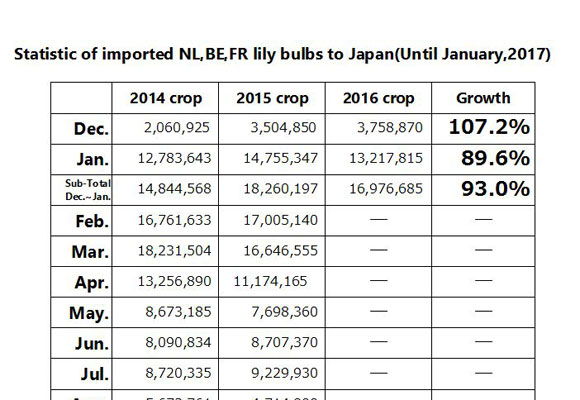Statistic of imported NL,BE,FR lily bulbs to Japan(Until Jan, 2017) (Feb 15, 2017)