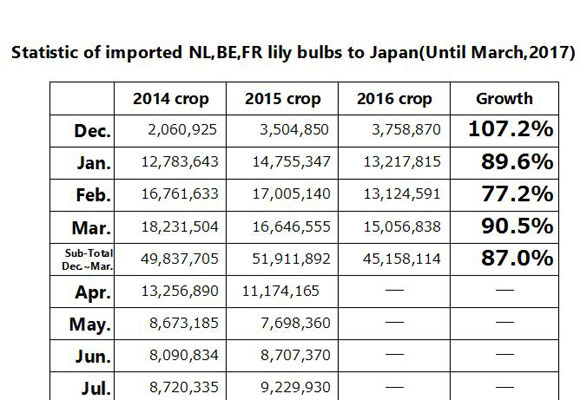Statistic of imported NL,BE,FR lily bulbs to Japan(Until Mar, 2017) (Apr 11, 2017)