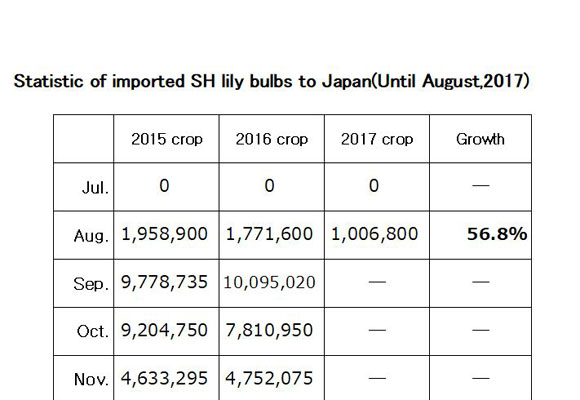 Statistic of imported SH lily bulbs to Japan(Until Aug,2017) (Sep 11, 2017)