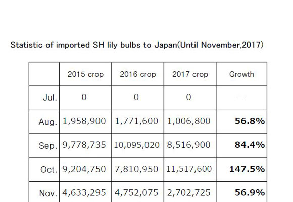Statistic of imported SH lily bulbs to Japan(Until Nov,2017) (Dec 11, 2017)