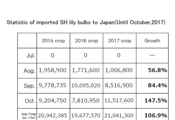 Statistic of imported SH lily bulbs to Japan(Until Oct,2017) (Nov 14, 2017)