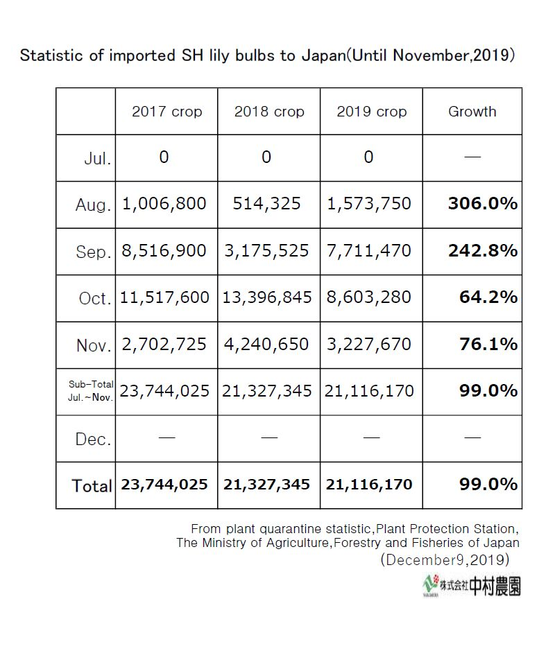 Statistic of imported SH lily bulbs to Japan(Until November,2019)