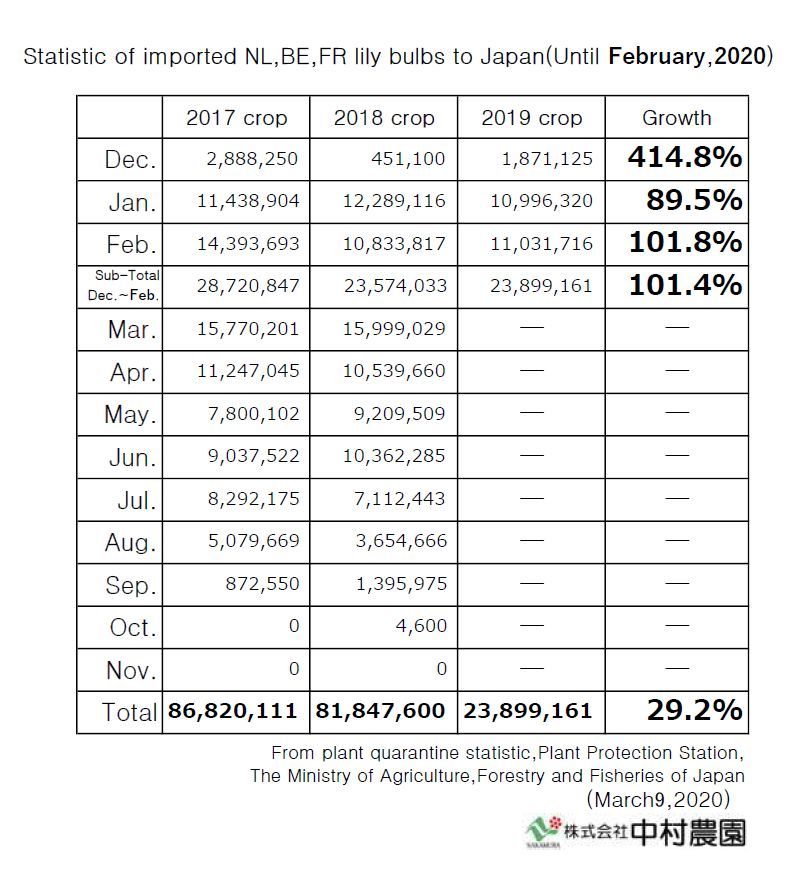 Statistic of imported NL,BE,FR lily bulbs to Japan(Until February,2020)