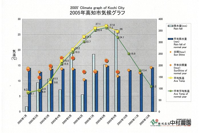 9月の平均気温(高知市)は26度で平年比2度高。 4月以来平年気温を上回り、温暖化顕著。(2005/10/27)