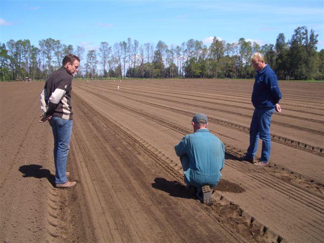 チリのサザンバルブの植え付け(2005/11/1)