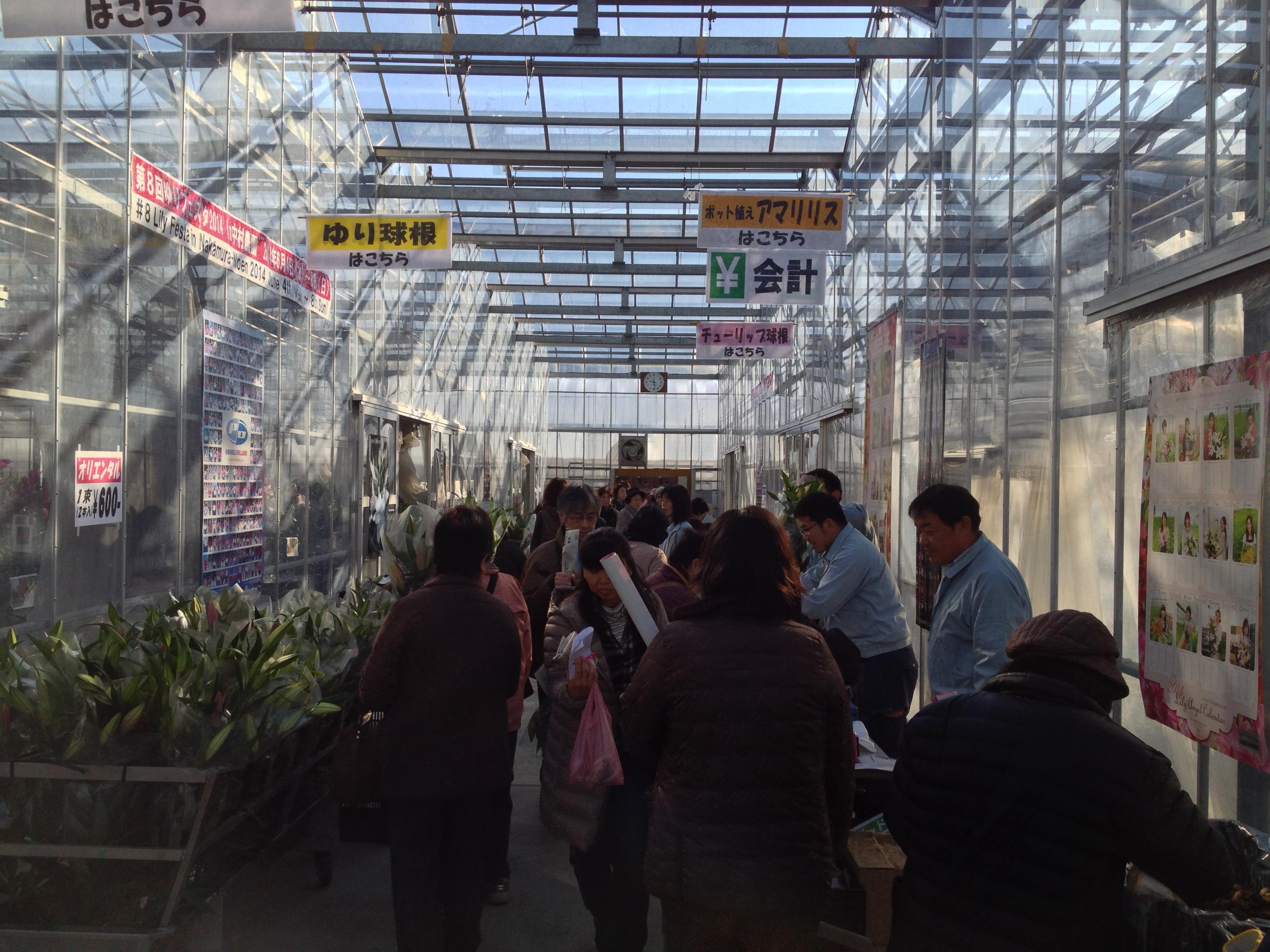 試験農場一般公開 兼 秋植え球根バザール開催の御礼!(2013/11/30)