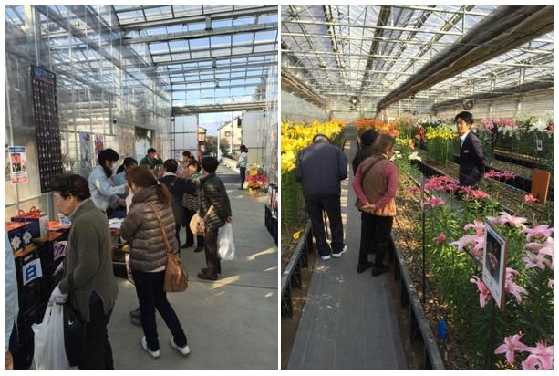 2015年試験農場一般公開 兼 秋植え球根バザール開催の御礼!(2015/11/28)