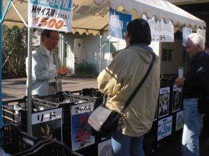 第二回試験農場一般公開 兼 秋植え球根バザール開催の報告と御礼(2010/11/23)