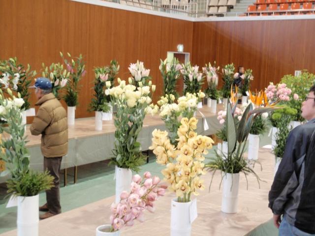 平成22園芸年度 高知県園芸品展示品評会 (2010/1/29)