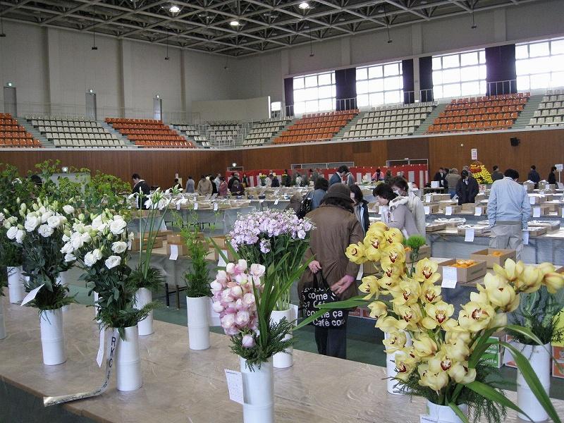 平成21園芸年度 高知県園芸品展示品評会 (2009/1/29)