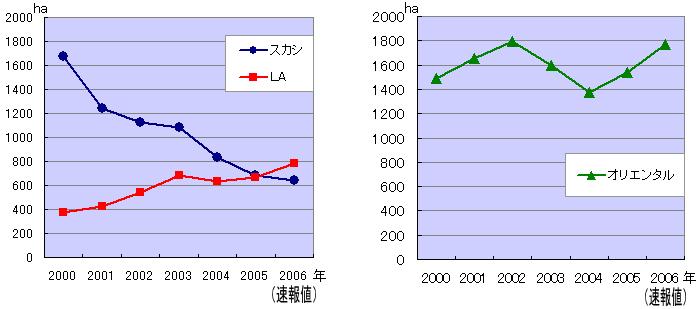 2006年オランダ産百合球根作付面積統計について(2006/8/2)
