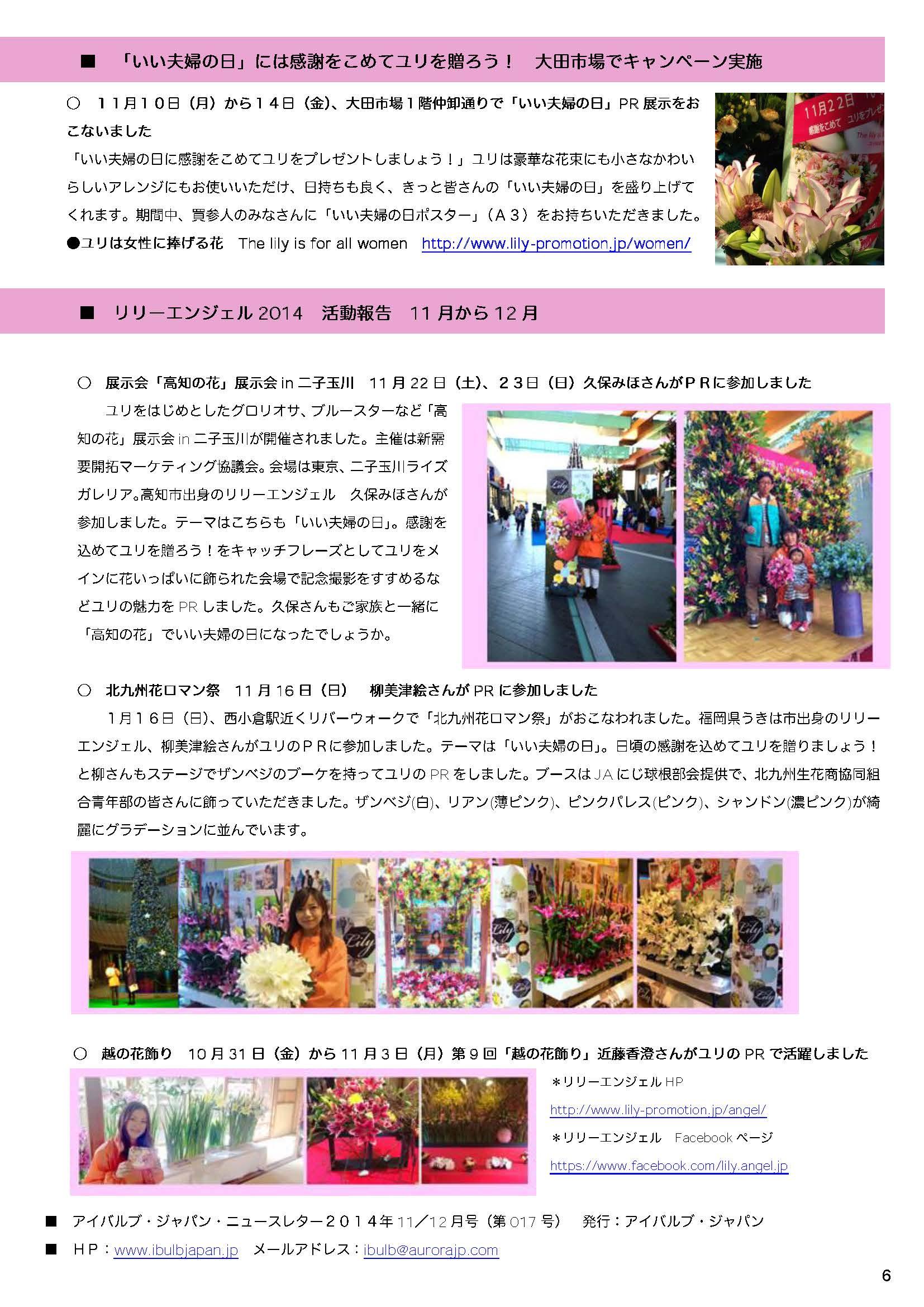 アイバルブ・ジャパン ニュースレター 2014年11/12月号(2014/12/11)