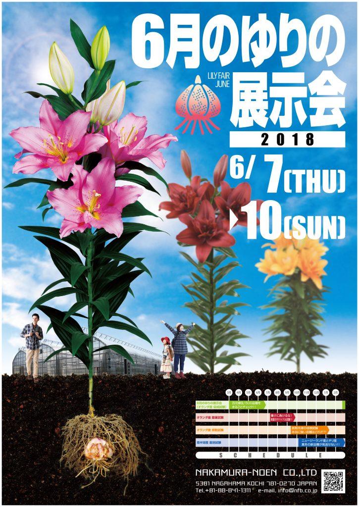 6月のゆりの展示会 2018